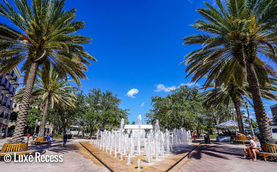 Things to Do In Palm Beach With Kids