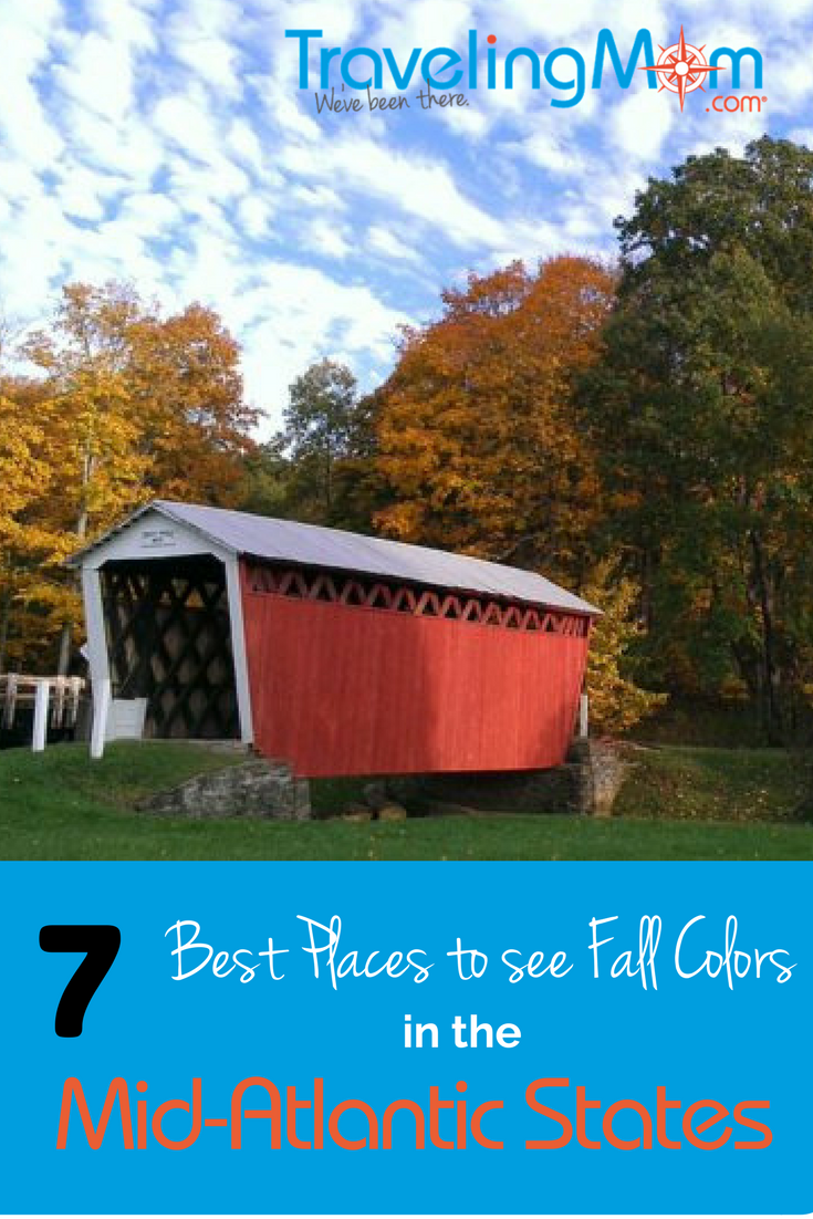 Fall in the Mid-atlantic is a beautiful celebration! Read on to learn why.
