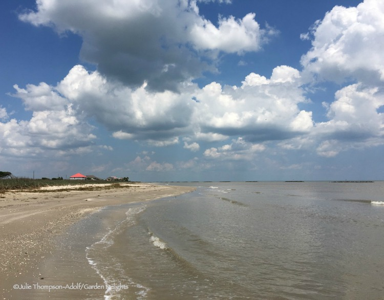 Things to Do in Lake Charles, Louisiana, include a visit to Rutherford Beach.