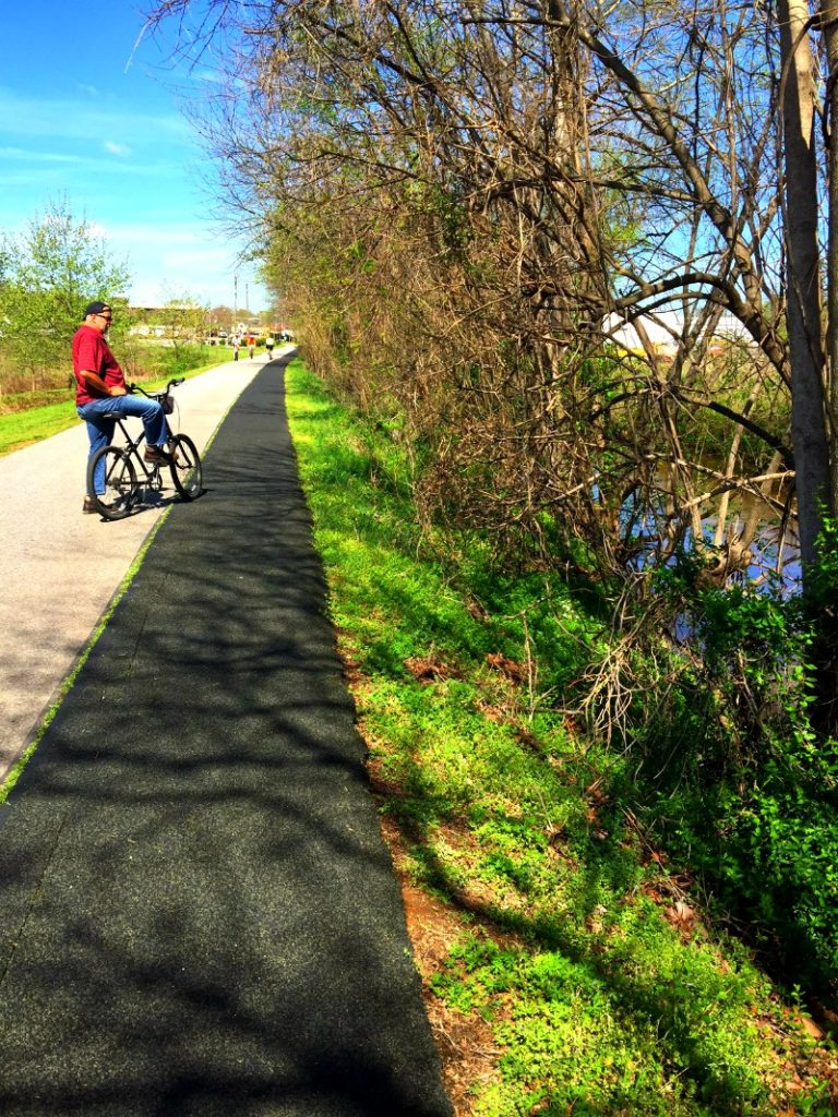 The Swamp River Trail is one of the best things to do in Greenville SC.
