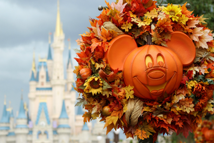 You'll find plenty of Halloween fun when you visit Mickey's Not So Scary Halloween Party.
