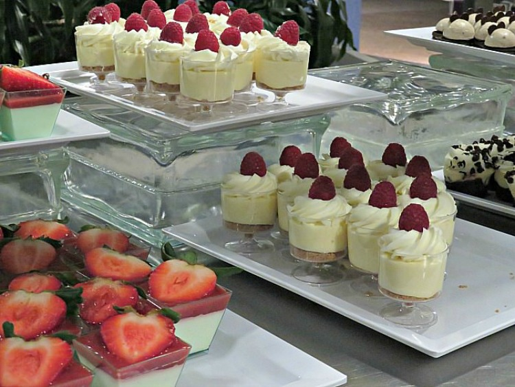 The Tomorrowland Dessert Party, one of the special experiences at Walt Disney World, offers a great view of the fireworks and delicious desserts.