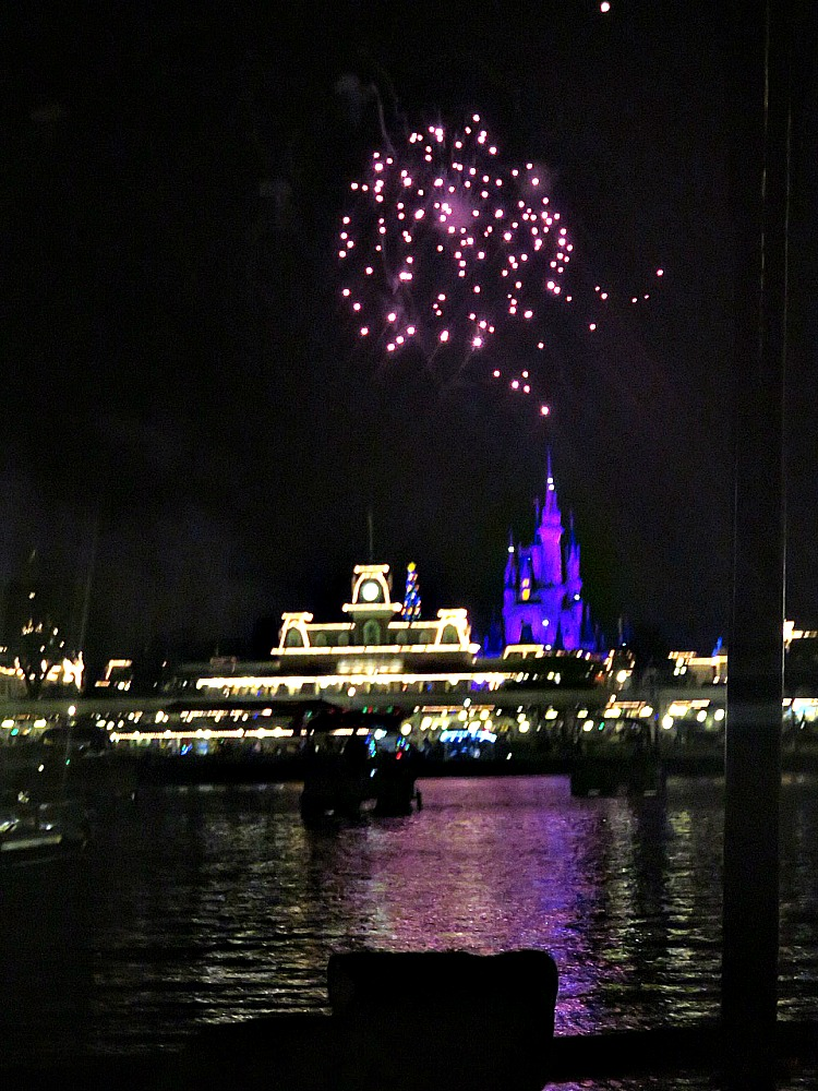 Enjoy fireworks from the lake with Pirates and Pals, one of the special experiences at Walt Disney World.