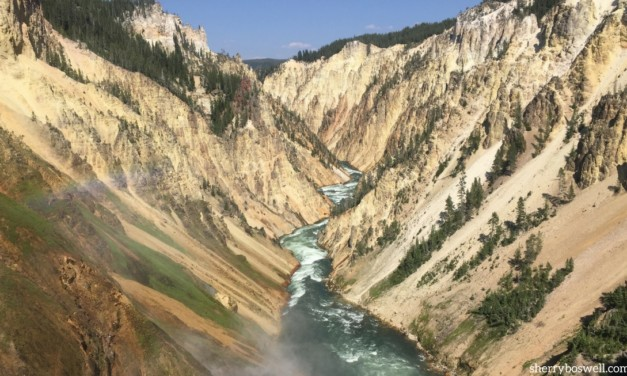 9 Tips for Your Yellowstone Vacation