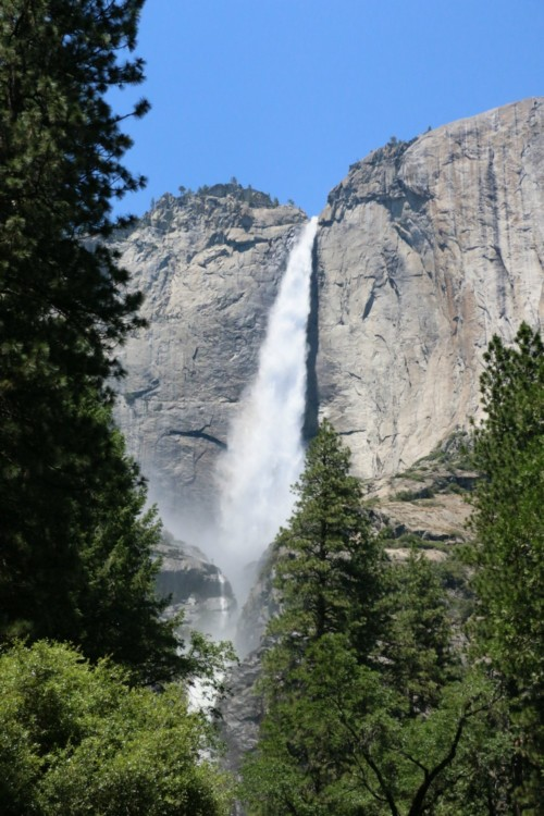 Yosemite National Park is the main attraction when lodging at Rush Creek Lodge.