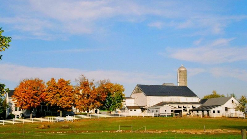 Want to travel with grandkids? Lancaster Pennsylvania is an ideal destination for multi-generational travel. Read on to learn why.