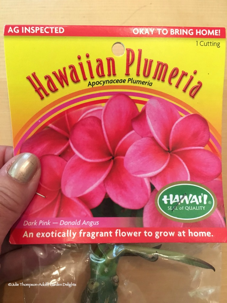 If you want to grow Hawaiian flowers at home, choose prepackaged, inspected plants.