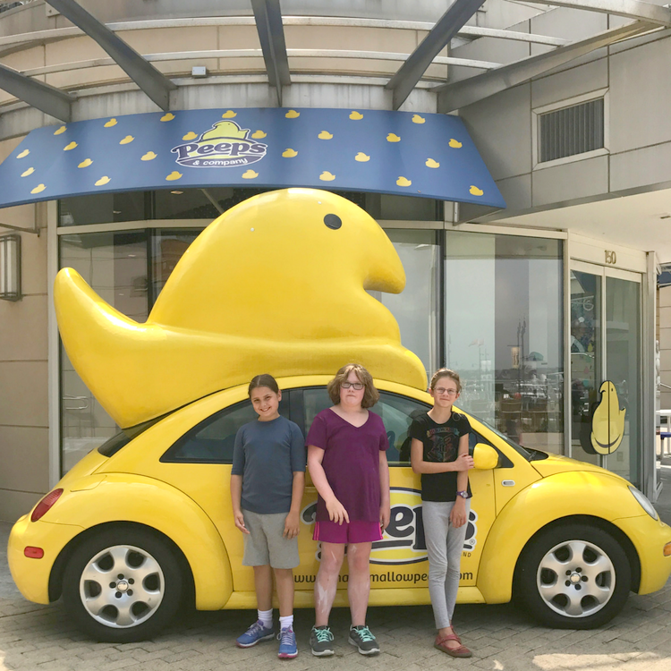 The Peeps Store is a National Harbor Highlight. Thinking about visiting National Harbor with kids? Trust a local's guide: here's what to see and do when taking the family to National Harbor, Maryland.
