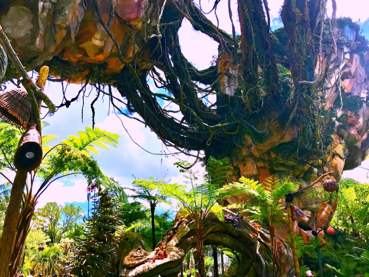Are you excited about visiting Pandora the World of Avatar at Walt Disney World? Read all about what you can expect on your first visit there.