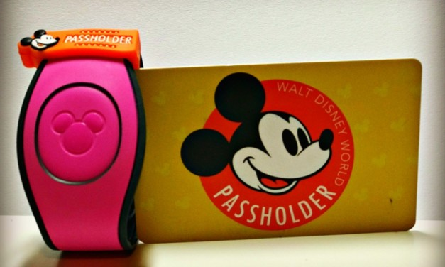 Is A Walt Disney World Annual Pass Right For You?