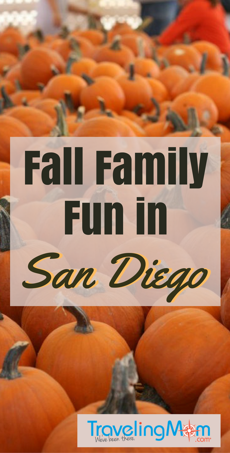 These fall family activities in San Diego include free entertainment, Halloween celebrations and traditional festivals.