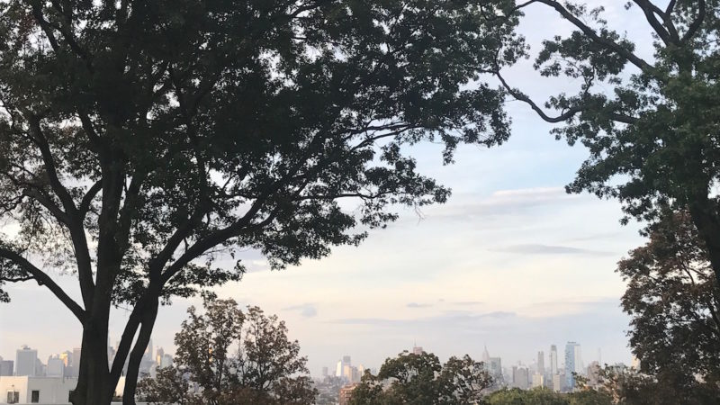 Did you know you can see the Manhattan skyline from Green-wood Cemetery