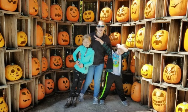 7 Halloweekends Cedar Point Tips – What is Not So Scary
