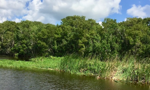 6 Ways To Find Old Florida in DeLand, And Why