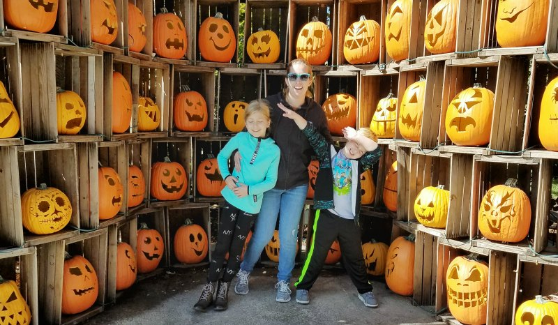 Things to do at Halloweekends that are not scary.