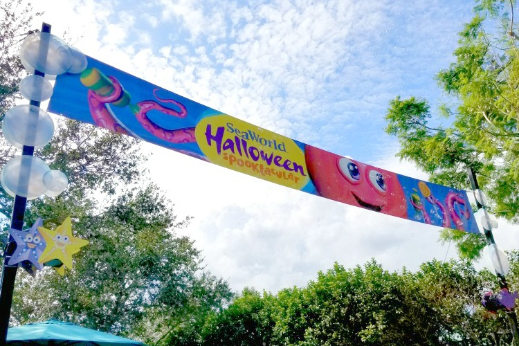 SeaWorld Halloween Spooktacular Tips - arrive early