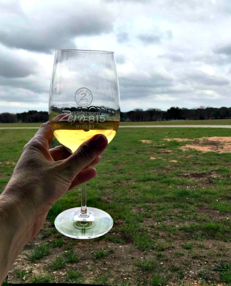Delicious wine, warm weather and big open spaces are part of what you'll fine at the Texas Hill Country wineries