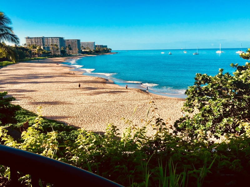 Family friendly hotels in Maui - The Sheraton Maui Resort and Spa has the the most beautiful beach in the Ka'anapali resort area.