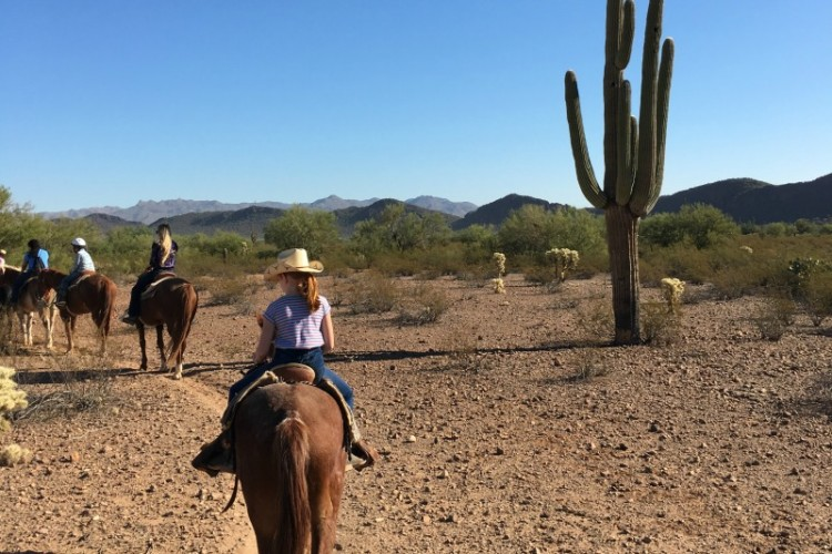 White Stallion Ranch - Slow Ride through Tucson Arizona Desert - a great outdoor adventure