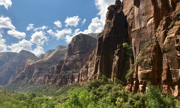 A First Time Guide for Zion National Park