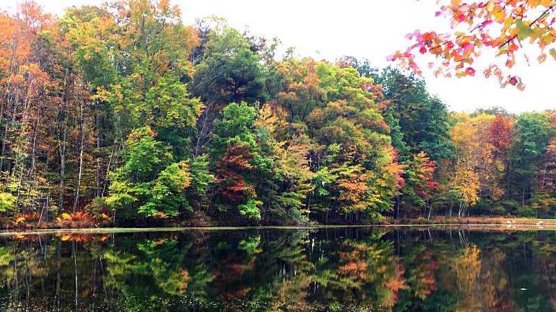 fall at the poconos