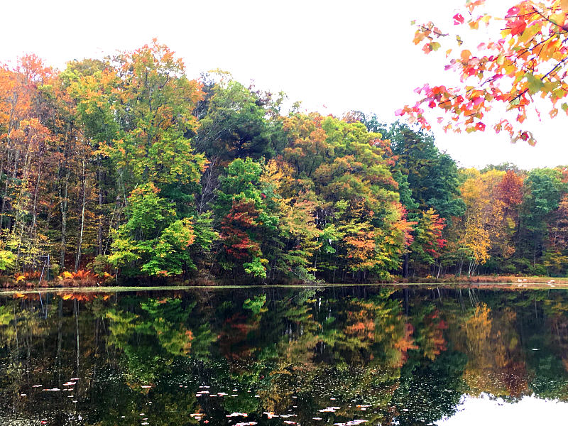 Fall is spectacular in the Pocono Mountains, PA