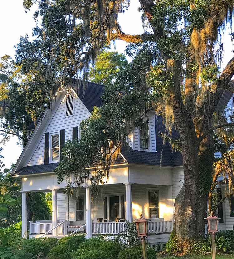 Moss covered trees and a historic home with a good ghost story. can be found in Conway near Myrtle Beach, SC