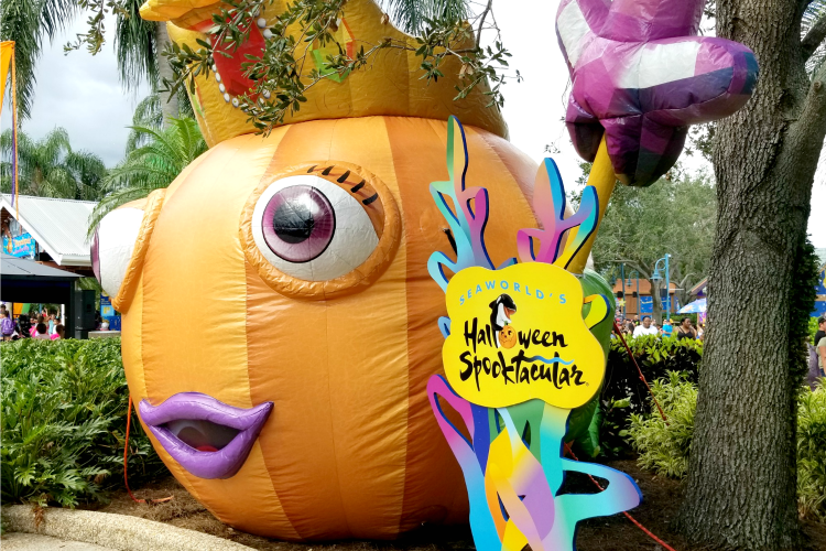 Make your visit to SeaWorld even better with these SeaWorld Halloween Spooktacular Tips