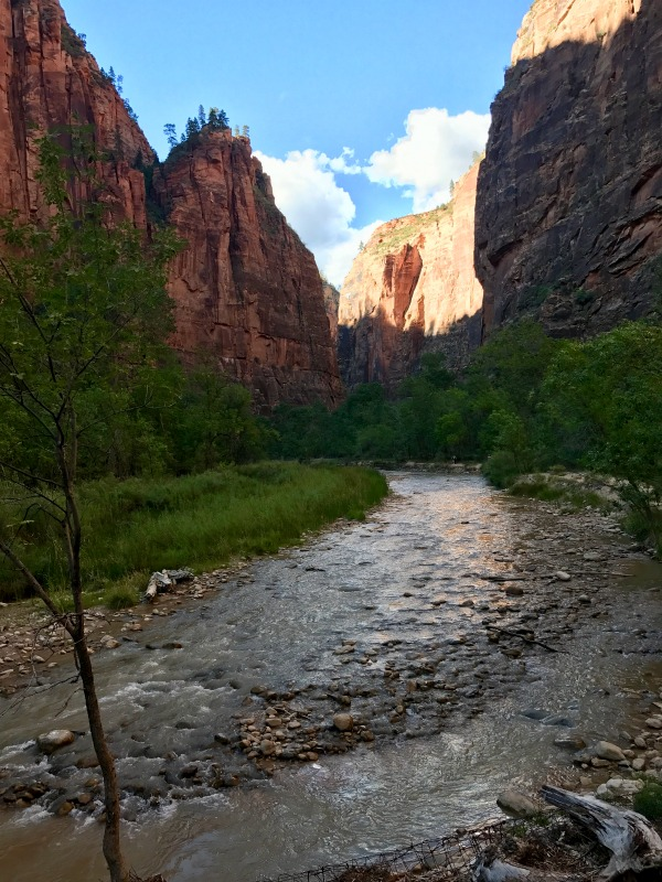 Zion National Park has so many great trails that lead you to amazing views of this beautiful park.