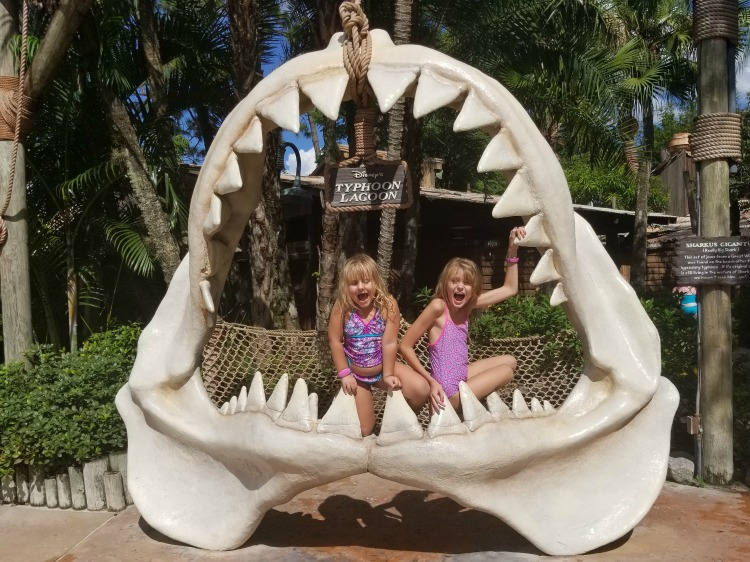 You'll come across a little bit of everything when visiting Disney's Typhoon Lagoon.