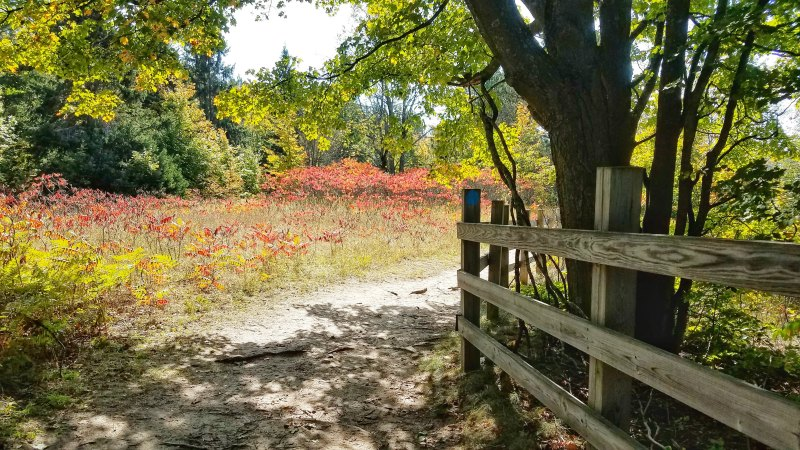 Don't miss the many Scenic outlooks in northern Michigan to visit in the fall, like this one at Deadmans Hill | Elmira Michigan