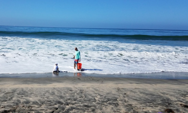9 Things to Do in Carlsbad with Kids (Including LEGOLAND)