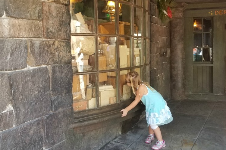 Harry Potter fans can find surprises in every window in The Wizarding World Of Harry Potter, another one of our tips for Universal Orlando Resort.