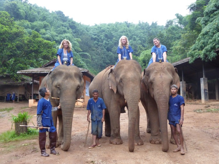 You can ride elephants at the Anantara Golden Triangle Elephant Camp and Resort in Chiang Mai, Thailand with kids.
