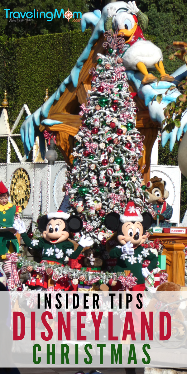 Insider tips for what to do, eat and see during Disneyland Christmas celebrations including holiday overlays and specialty treats.