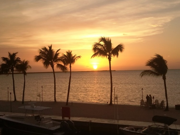 Catch the sunset that the Florida Keys is famous for every evening at the Key Largo Bay Marriott Beach Resort.