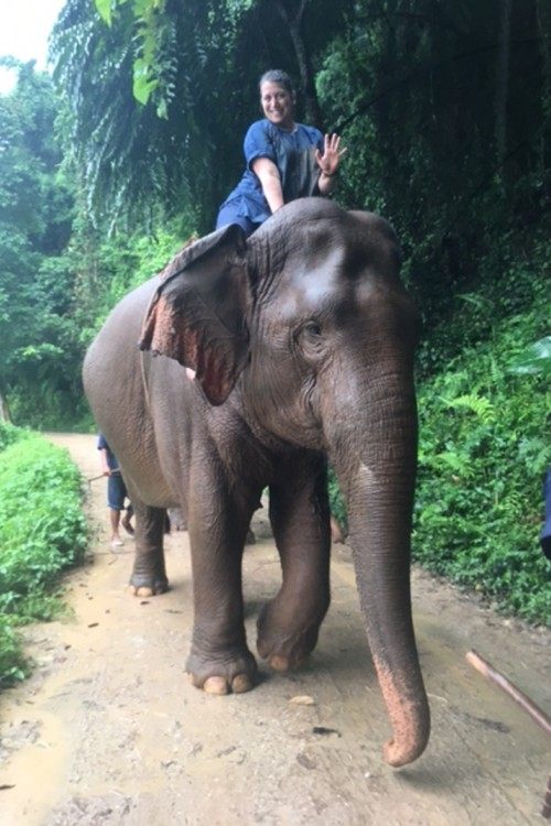 You can take elephant rides at the Anantara Golden Triangle Elephant Camp and Resort in Chiang Rai, Thailand when you're in Thailand with kids.