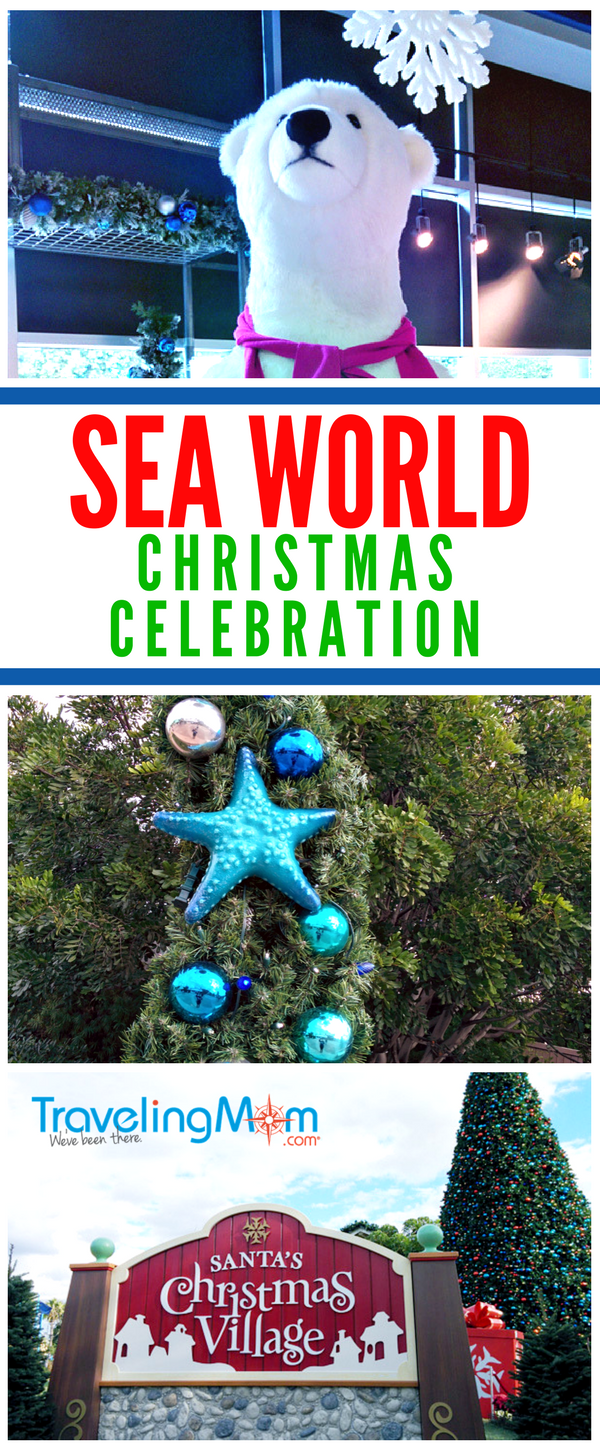 Find out how to get into the holiday spirit at SeaWorld San Diego Christmas Celebration with tips about the seasonal attractions, shows and food offerings including Rudolph's Christmastown and O Wondrous Night live show.