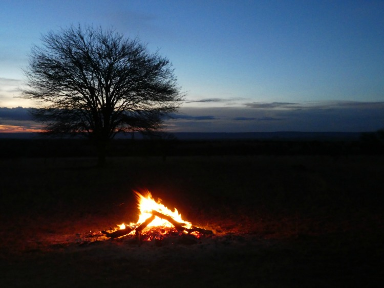 Sunset on the Serengeti - African safari planning tips