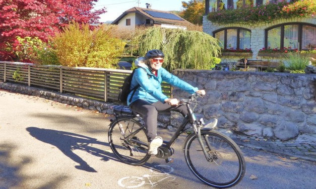 How to Take a Self-Guided Austrian Biking Tour: Successful Tips