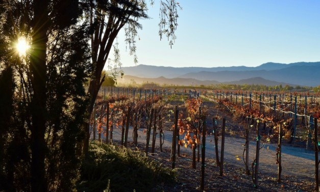 How to Spend 2 Days in Temecula CA: Wine, Hike, Wine, Dance!