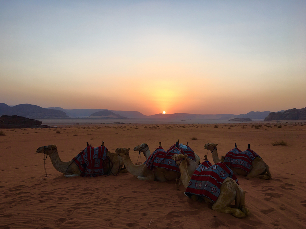 Explore Wadi Rum desert. How to plan a trip to Jordan with kids