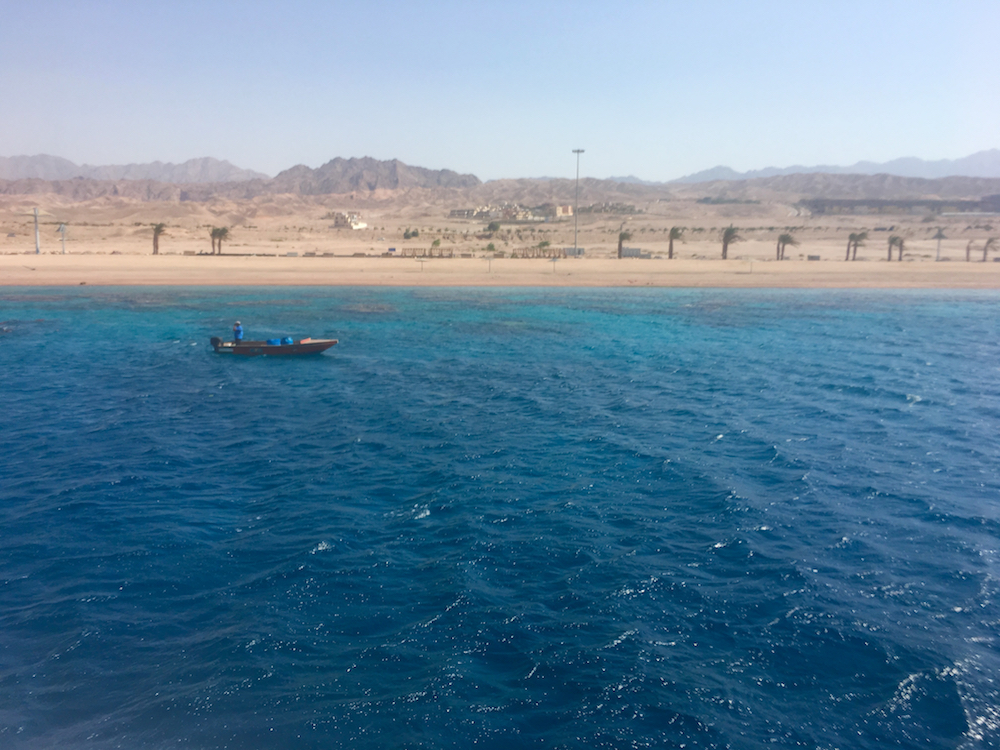 Snorkel in the Red Sea. How to plan a trip to Jordan with kids.