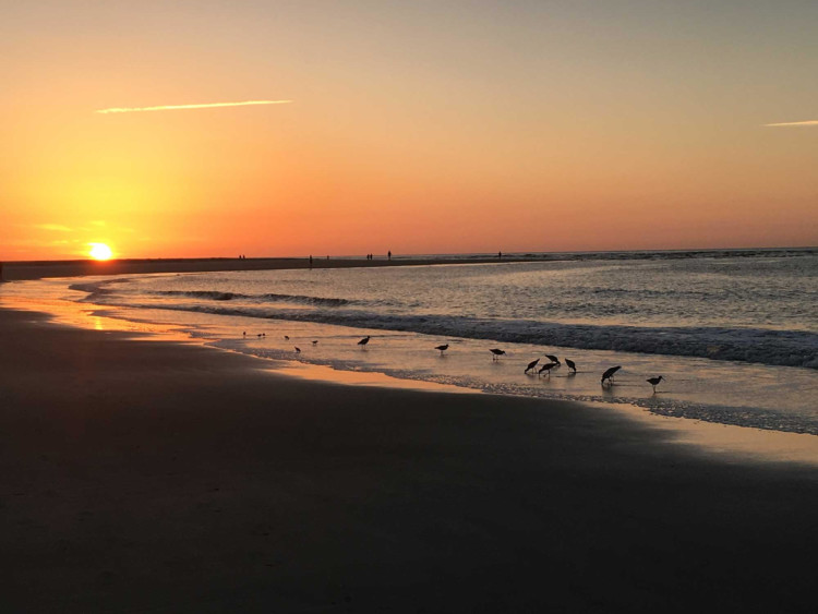 Find inspiration in St. Simons Island, Georgia 1 of 11 best places to travel in the United States in 2018