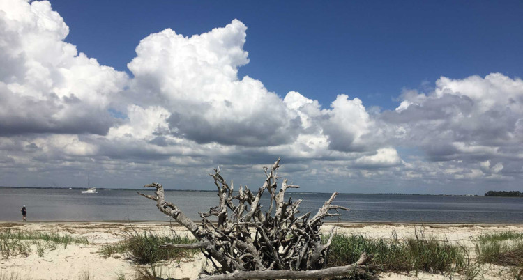 Beautiful beaches paired with history and authentic regional food make St. Simons, Georgia a top destination in the eastern United States.