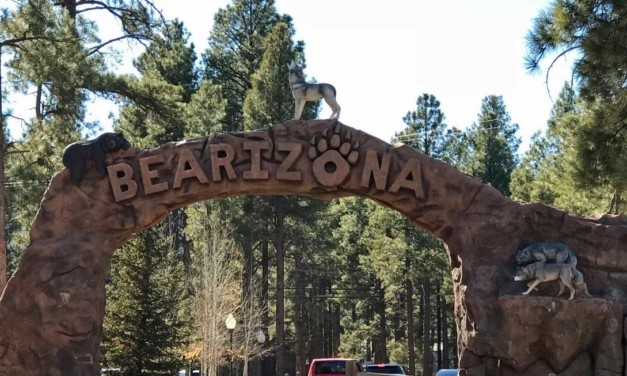 Bearizona: The Drive-Through Zoo in Arizona