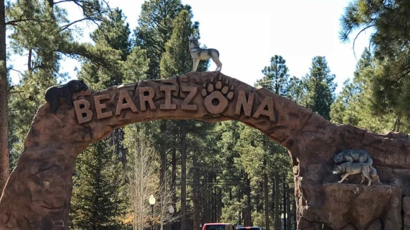 Tips for Visiting Bearizona on an Arizona Road Trip