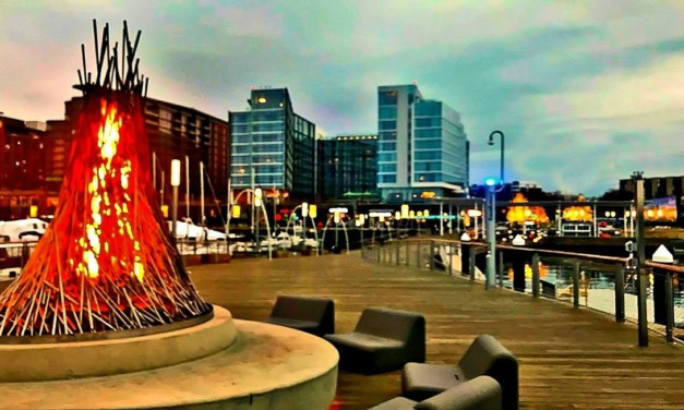 16 Top Things to Do at The Wharf in Southwest DC with Kids