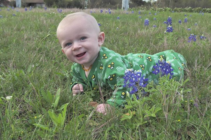 baby in a field of Texas bluebonnets near Brenham