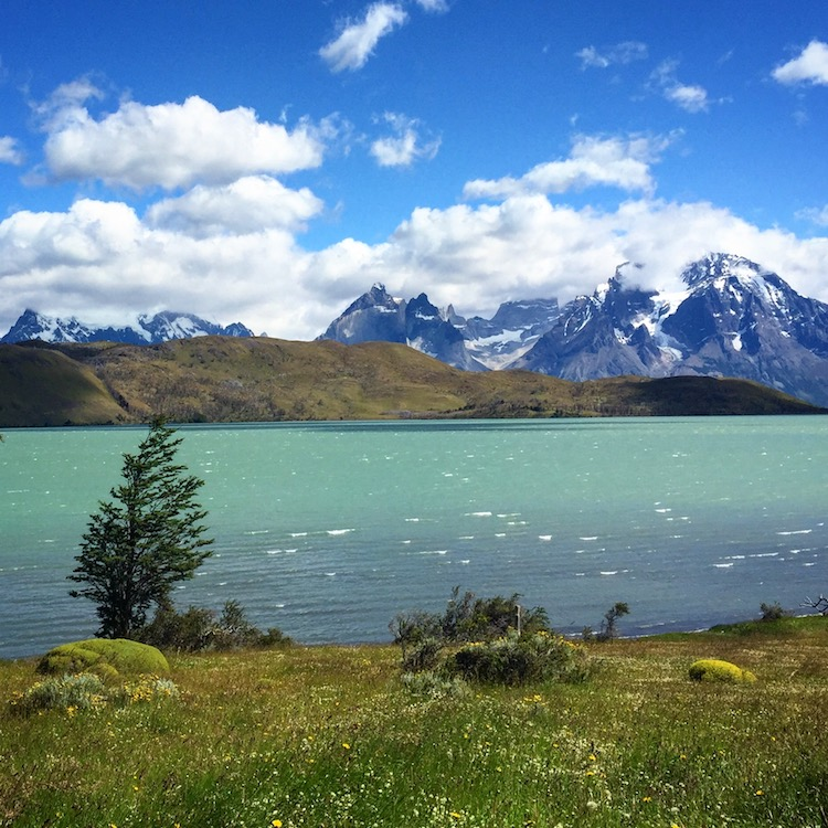 Best Chile travel advice is visit Patagonia with a guide who will set you up to experience Torres del Paine National Park.